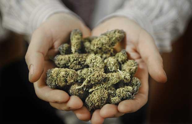 Ontraio Legalized Cannabis